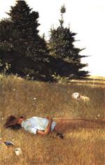 Wyeth1